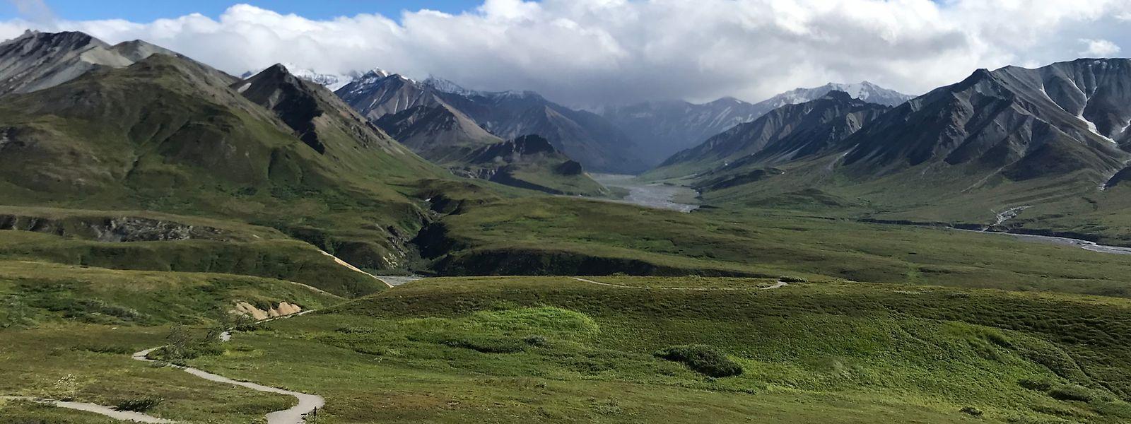 Der Denali-Nationalpark ist ein wahres Naturparadies.