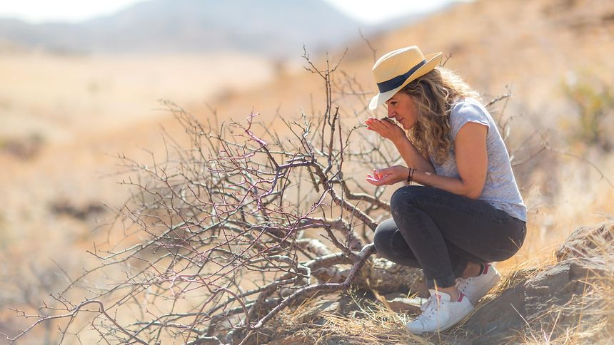 Auf der Suche nach frischen Ideen und neuen Inhaltsstoffen: Ihre Recherchereisen führen Céline Roux in die entlegensten Winkel der Welt, so wie hier nach Namibia.