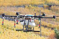 Intelligente Drohnen statt Hubschrauber – so soll die Weinbergüberwachung der Zukunft aussehen. Die Drohnen können auch Pflanzenschutzmittel versprühen.⋌
