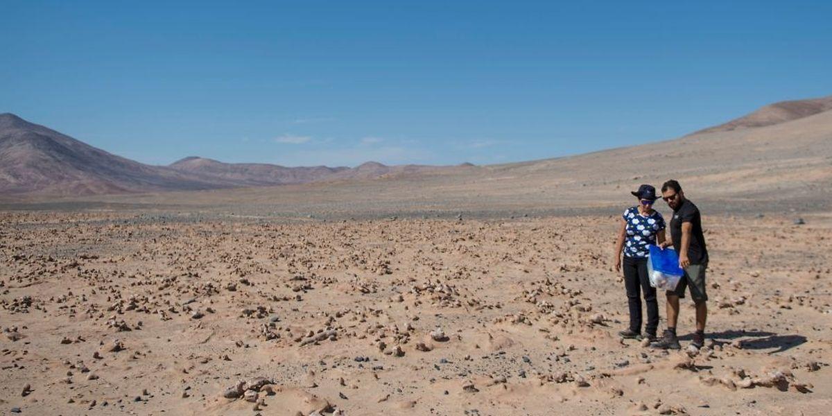 Deux  biologistes chiliens, Cristiana Dorador et Jonathan Garcia, cherchent des échantillons de roche afin de les analyser. Le désert d'Atacama, au Chili, est le plus aride de la planète. Il ressemble beaucoup à la planète Mars et les scientifiques pensent pouvoir y découvrir des indices majeurs de l'évolution de la vie.