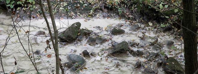 Bei Verschmutzungen, wie hier der Drosbach im September 2017, kann man Klage bei der zuständigen Verwaltung einreichen.