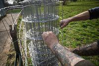 Droht geint Schwengspescht zu Lenger op der Velospist fir op Këntzeg  - Foto : Pierre Matgé/Luxemburger Wort