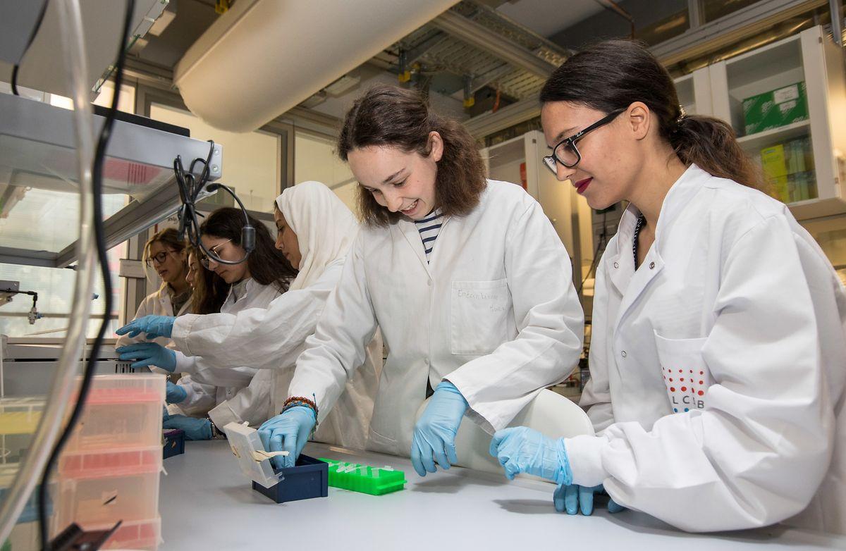 Sechs der ersten sieben Studentinnen des neuen Master-Studiengangs untersuchen Proben im Labor auf dem Campus Belval.
