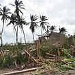 Downed trees are seen near destroyed house after the passing of Hurricane Matthew, in Sous Roche, in Les Cayes, Southwest Haiti, on October 6, 2016. The storm killed at least 108 people in Haiti, the poorest country in the Americas, with the final toll expected to be much higher.   / AFP PHOTO / HECTOR RETAMAL