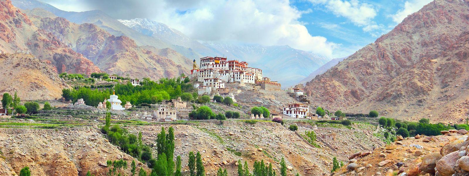 Viele Inder zieht es im Hochsommer in den Norden des Landes, in Richtung Himalaya. Hier zu sehen: das malerisch gelegene Likir-Kloster in der Nähe von Leh.