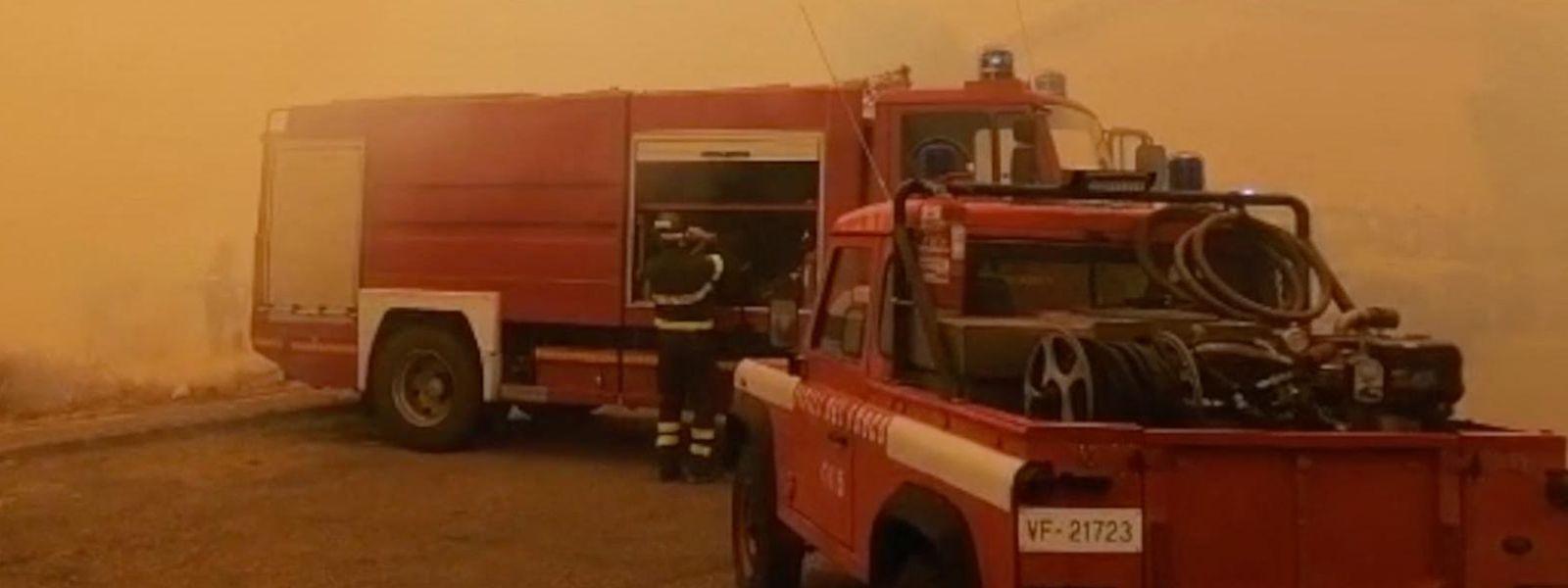 Plus de 10.000 hectares de végétation sont déjà partis en fumée dans la région d'Oristano, ravagée par un incendie.