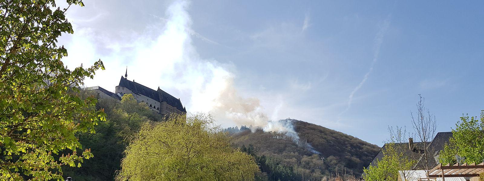 Etwa 70 Feuerwehrleute waren beim Waldbrand in Vianden im Einsatz.