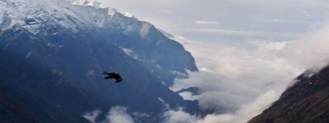 Das Erdbeben in Nepal hat eine tödliche Lawine am Mount Everest ausgelöst. Mindestens 19 Bergsteiger starben.
