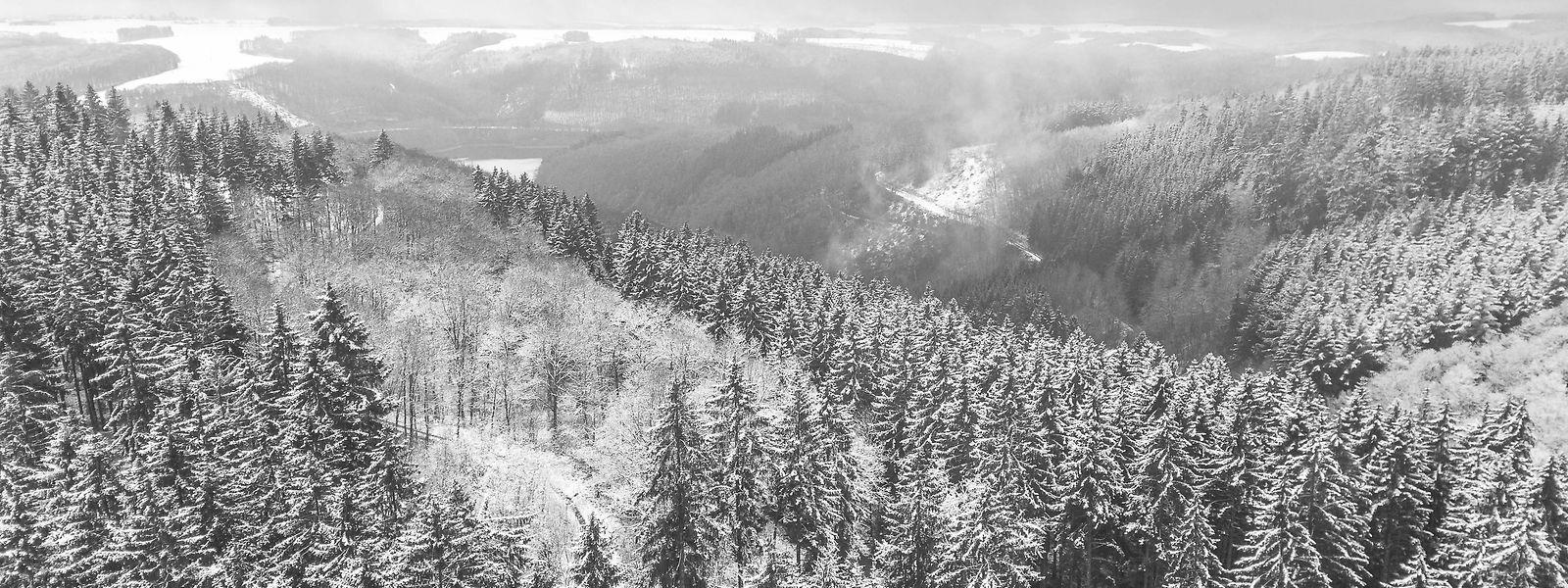 Am Donnerstag können bis zu acht Zentimeter Schnee fallen.