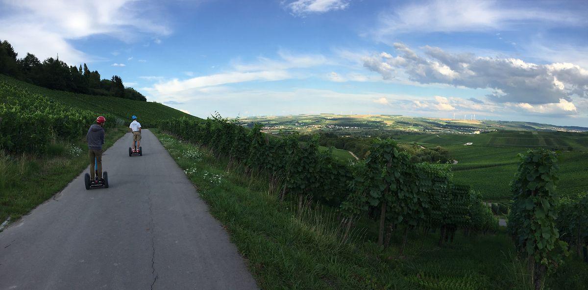Une vue panoramique à couper le souffle: les routes dans les vignes à Remich sont idéales pour se balader en Segway.