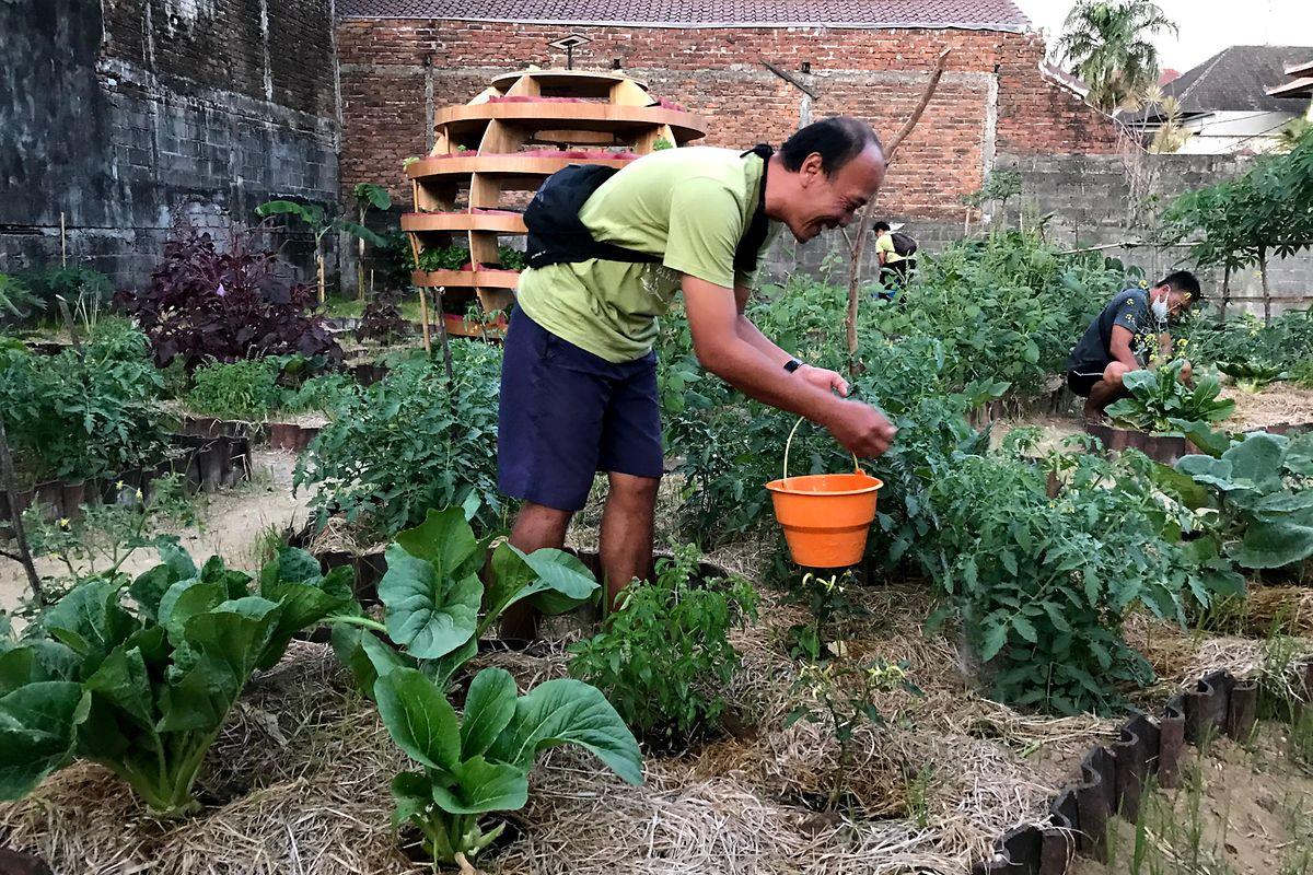 Ein Mann bewässert Gemüse, das er im Gemeinschaftsgarten anbaut. In Zeiten der Corona-Pandemie und Reisesperre haben sich die Einheimischen der Landwirtschaft zugewandt.