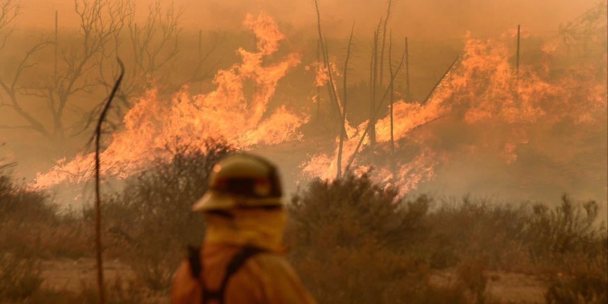 Les pompiers s'activent dans la forêt nationale de San Bernardino, en Californie.