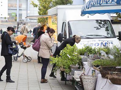 Rentrée du marché de Kirchberg / Foto: Steve EASTWOOD