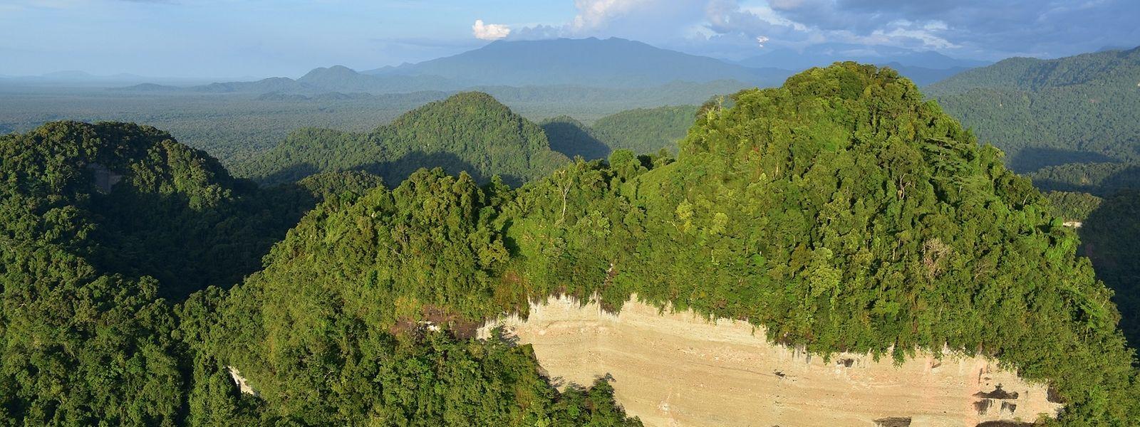 Natur pur: Die Region East Sepik ist nach dem größten Fluss des Landes – dem Sepik – benannt. Das Gebiet, das von Bergland geprägt ist, ist touristisch bereits gut erschlossen.