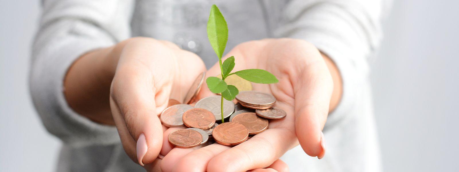 StarTalers préconise l'investissement durable
