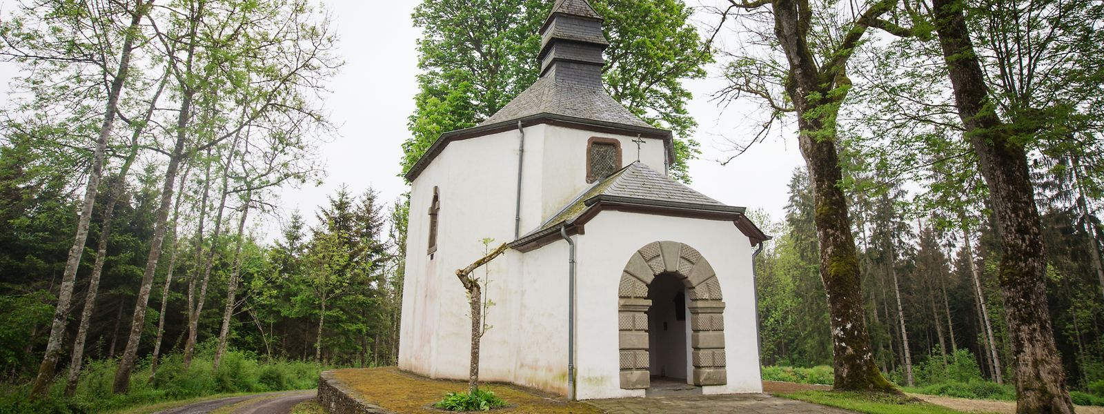 Die Pirminus-Kapelle befindet sich auf dem Plateau des Pirminus-Hügels auf der Strecke zwischen Büderscheid und Nothum.