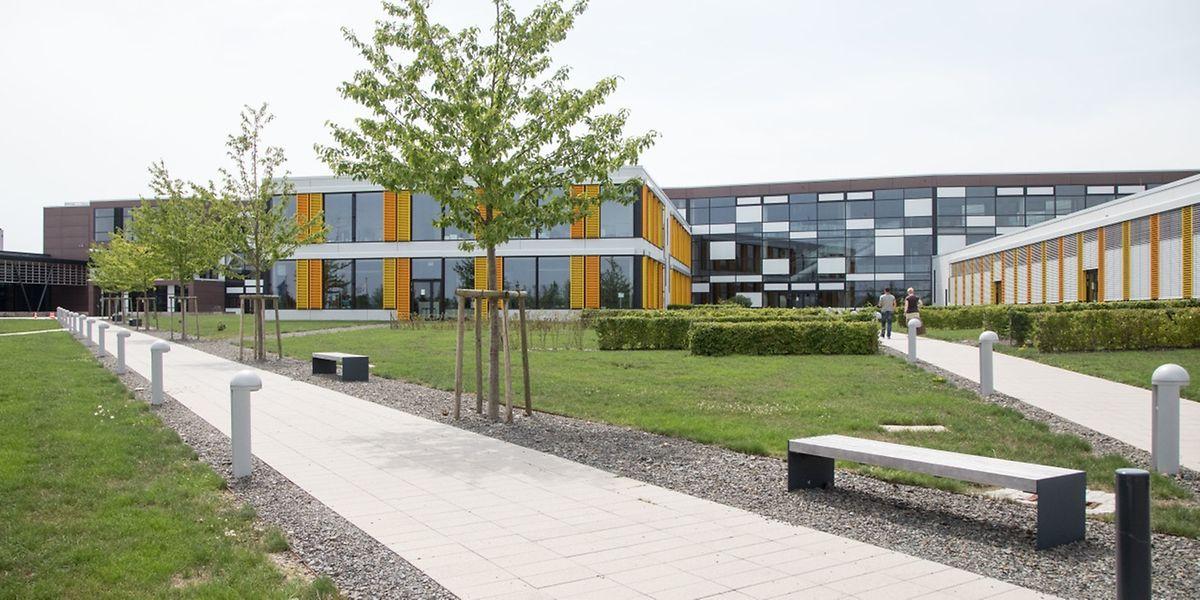 Im Lënster Lycée ist jede Menge Platz. Während die Einschreibungen in den unteren Klassen wie geplant verlaufen, mangelt es an Schülern für die oberen Klassen.