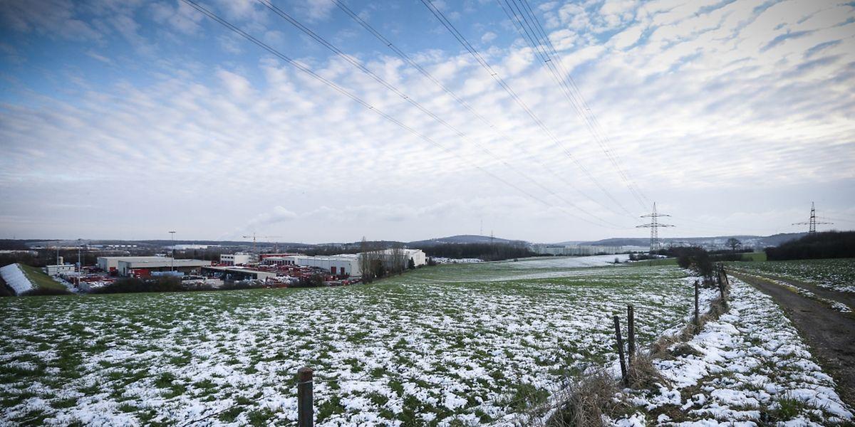 15 Hektar Land sollen für den Bau der Joghurtfabrik genutzt werden.