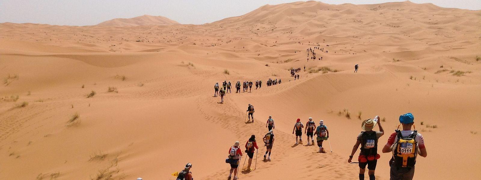 Marathon des Sables: «Certains concurrents marchent beaucoup pendant l'épreuve. Courir dans le sable par une telle chaleur est extrêmement difficile lorsque l'on ne s'est pas entraîné à supporter ces conditions.»