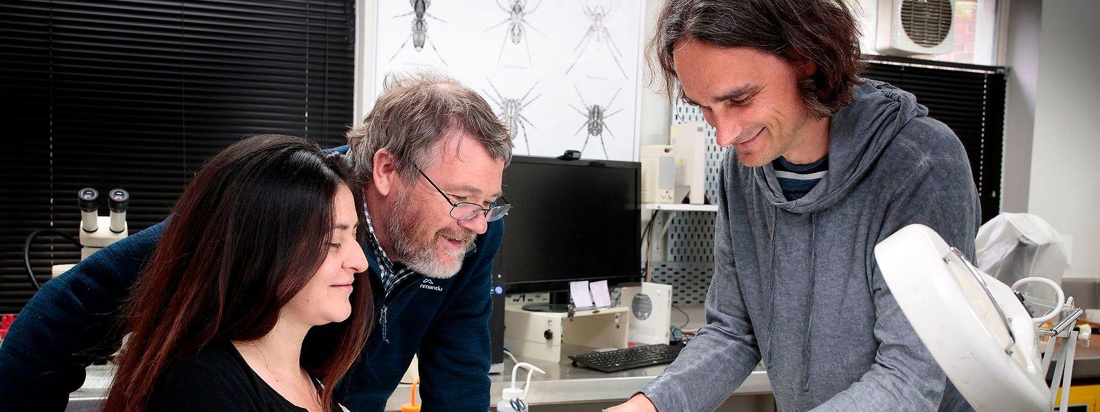Os investigadores com as ossadas de pinguim.