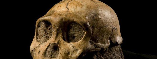 Homo sapiens soll rund 100.000 Jahre früher gelebt haben, als bisher angenommen wurde.