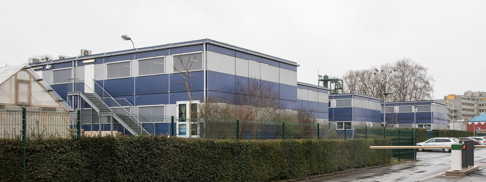 Die Ecole Nationale pour Adultes hat ihren provisorischen Sitz in Hollerich.