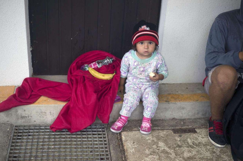 Die Flüchtlinge erreichten am frühen Samstagmorgen den Ort Nickelsdorf, von wo aus sie per Sonderzug nach Salzburg gebracht werden.