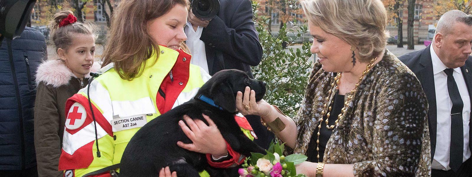 """Ein Hund, der Adel und das """"Rote Kreuz"""": Überall nur zufriedene Mienen."""