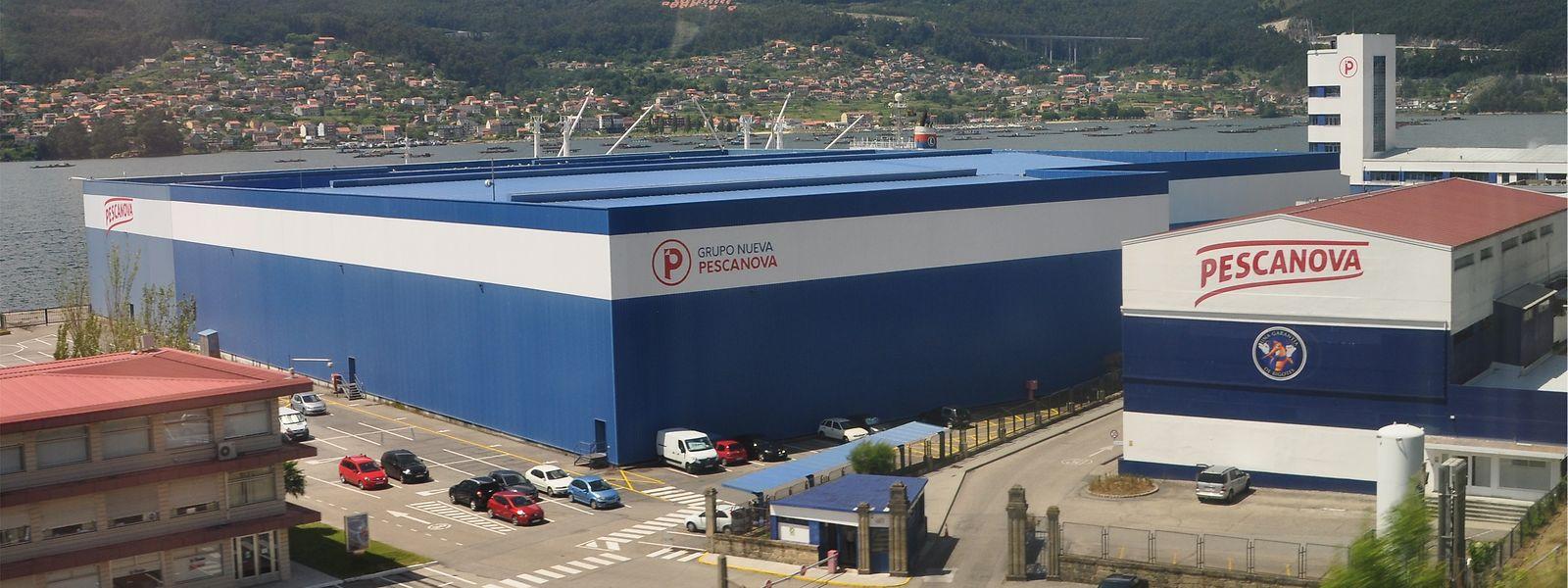 Luxempart-Aktien von Pescanova in Millionenhöhe – doch das spanische Unternehmen hatte seine Bilanzen gefälscht.