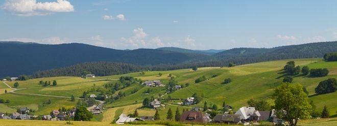 Ein Teil des Schwarzwalds wird zum 16. Biosphärenreservat.