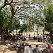 Die äthiopischen Bauern werden geschult: Was ist eine Versicherung, was sind Satelliten, wie werden sie bezahlt bei einer Missernte …