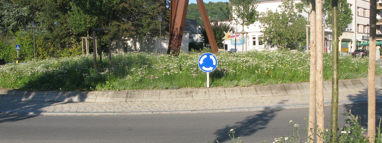 Ein Blumenmeer in der Ortsmitte: Dieses Bild bot der Kreisverkehr in Kayl im August.