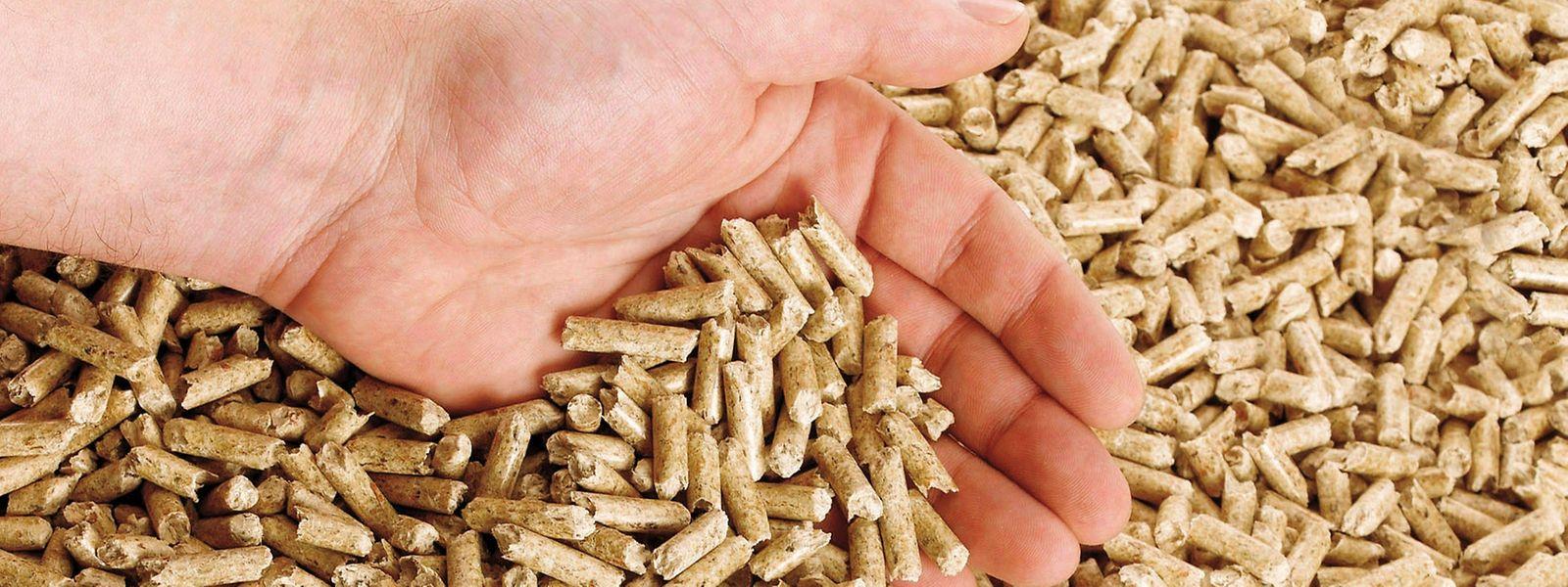 Ökologisch und wirtschaftlich gesehen, bietet das Heizen mit Holzpellets Vorteile.