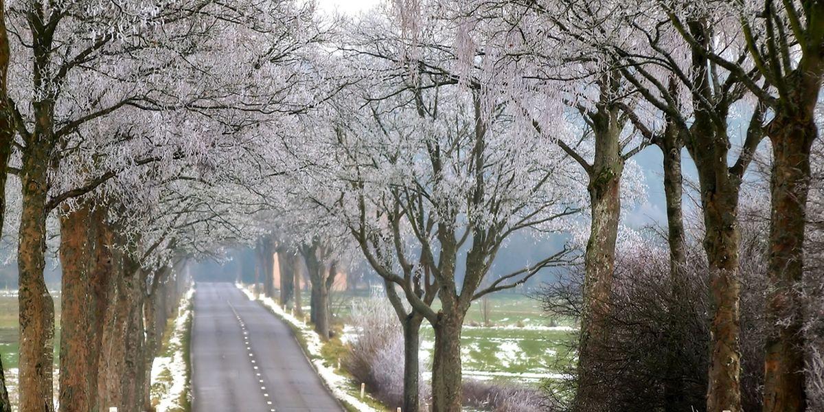 Dans l'Oesling, des averses de pluie et de neige sont attendues dans la nuit.