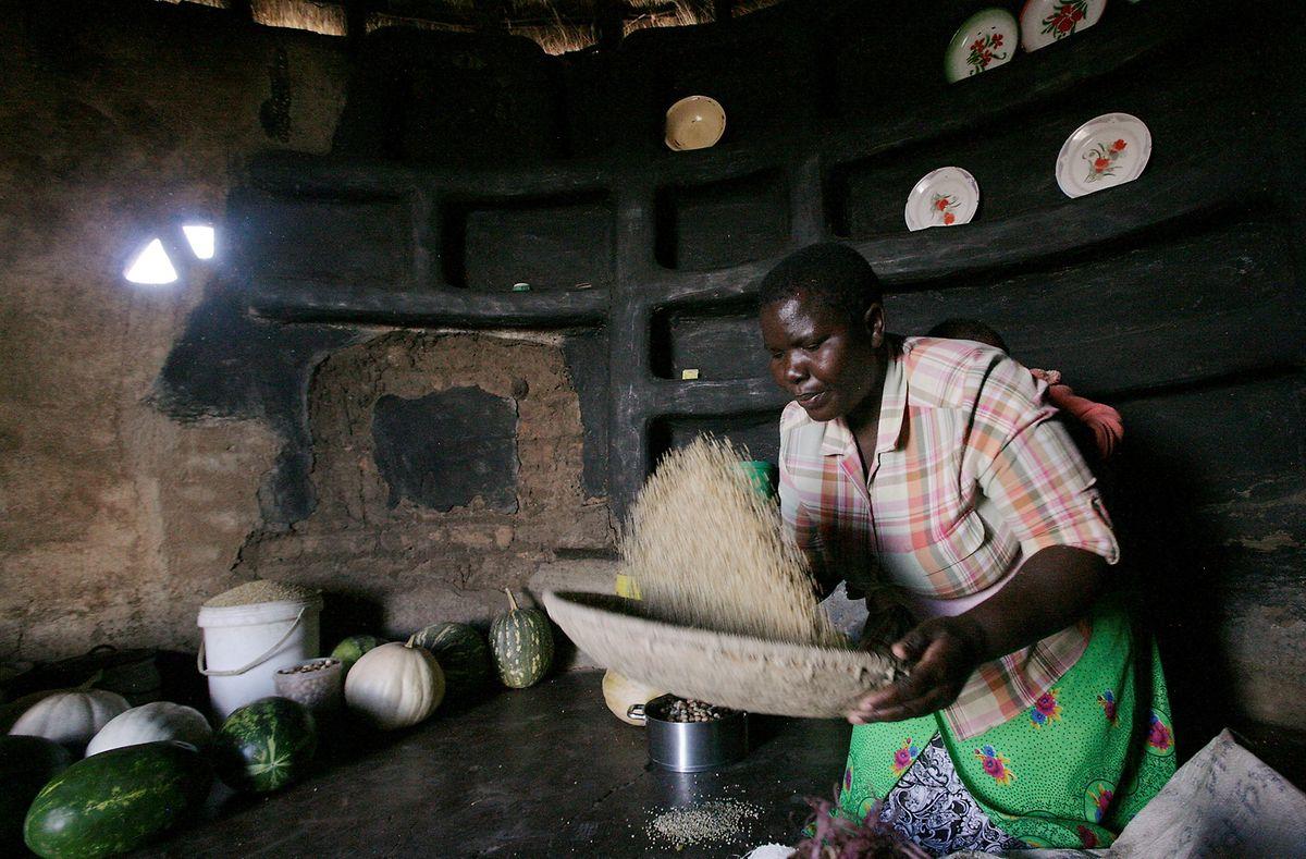 Eine Frau in Zimbabwe bereitet Sorghum-Hirse als Mahlzeit vor.