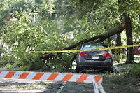 A tree branch rests on a car after Hurricane Isaias made landfall near the town the night before in Wilmington, North Carolina on August 4, 2020. - Hurricane Isaias slammed into North Carolina bringing life-threatening storm surges and leaving more than 350,000 homes without power, as the US eastern seaboard battened down for flash floods and destructive winds. Packing sustained winds of 85 miles per hour (around 140 kilometers per hour), the Category 1 hurricane made landfall in the southern part of the state on Monday just before midnight (0400 GMT), the National Hurricane Center said. (Photo by Logan Cyrus / AFP)