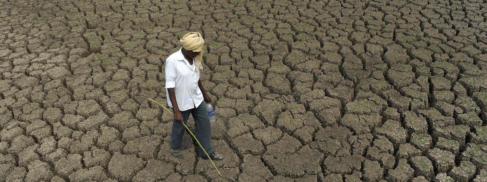 Dürre und Hungerkatastrophen drohen in weiten Teilen der Erde.