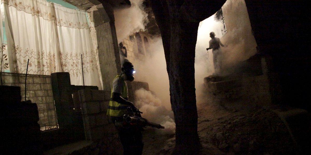 Ein Mitarbeiter des brasilianischen Gesundheitsministeriums räuchert eine Straße aus, um die gefährlichen Mücken zu beseitigen.