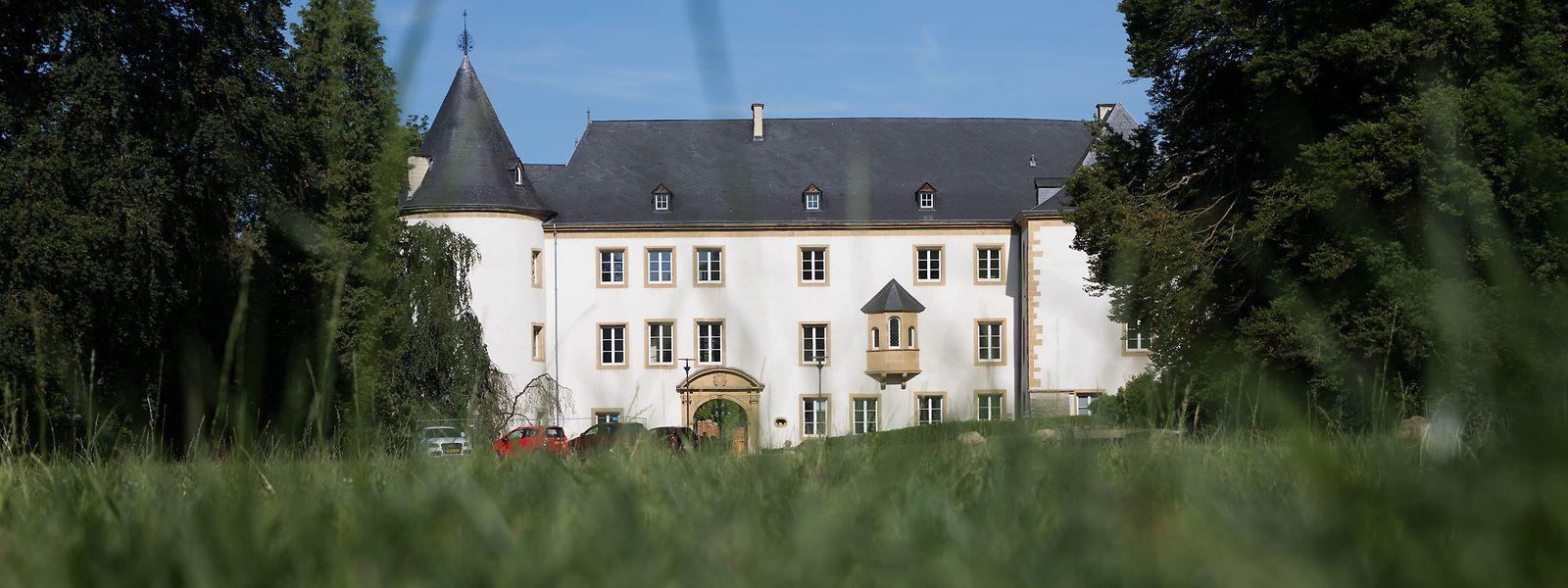 Für die Renovierung des Schlosses ist ein Betrag in zweistelliger Millionenhöhe erforderlich, unter anderem wegen der strengen Auflagen des Denkmalschutzes.