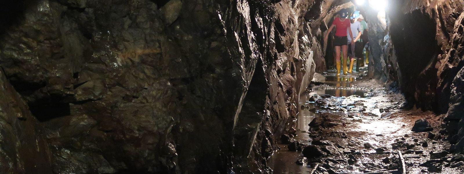 Im knapp 400 Meter langen Stollen muss der Besucher zum Teil auch durch Wasser waten