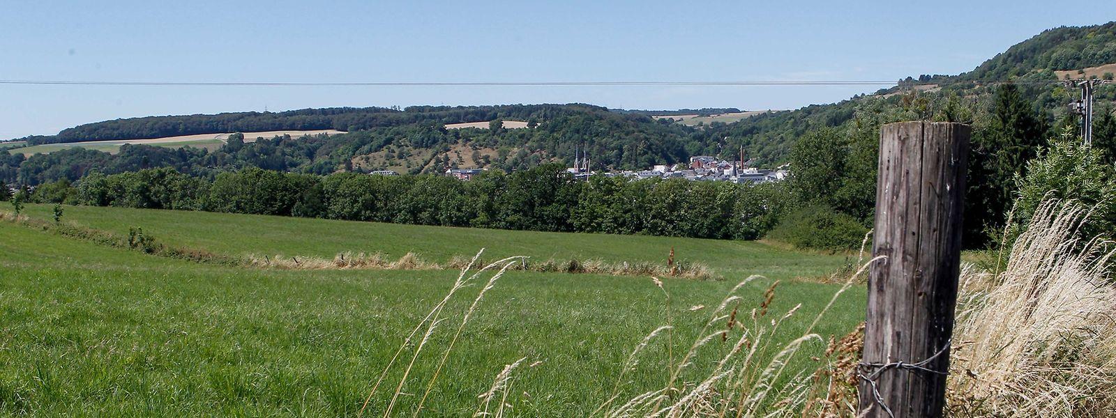 """Auf dem """"Kréihwénkel"""" bei Gilsdorf herrscht bislang nur Ackerbau statt Schule."""
