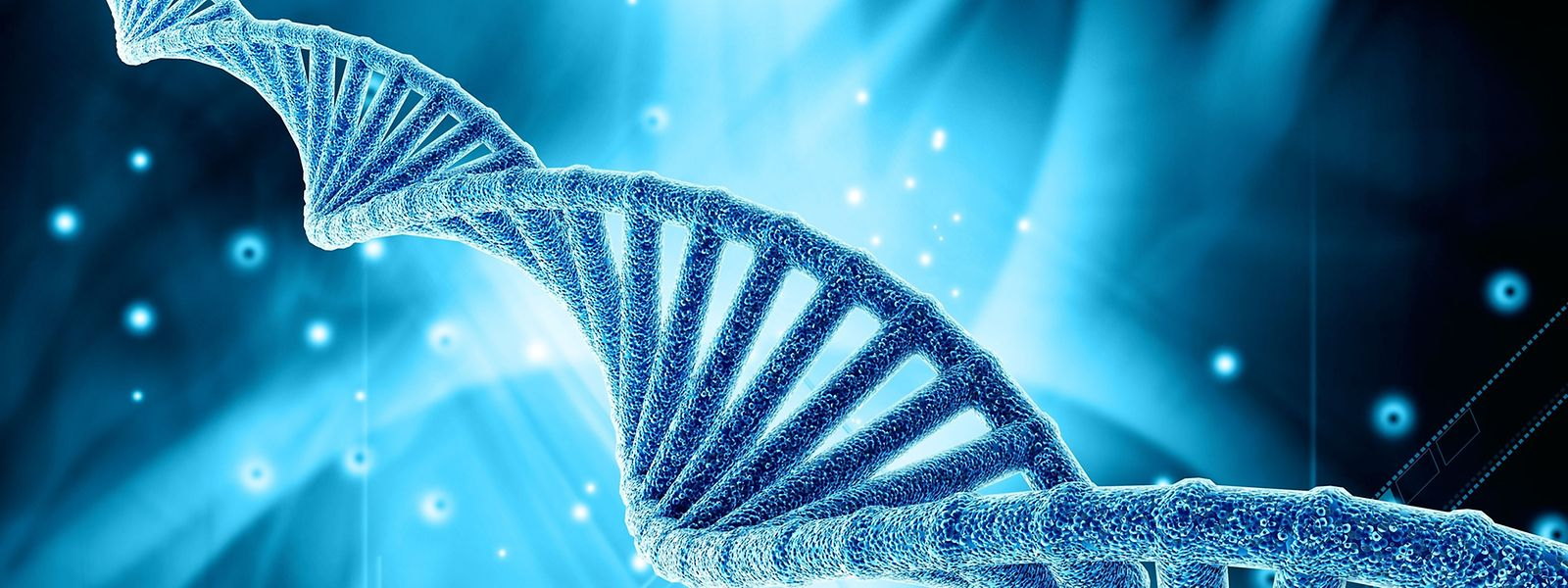 A terme, 21 pays européens devraient participer à l'échange d'ADN à des fins criminalistiques.