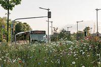 Marc Theis se dit particulièrement impressionné par la transition effrénée d'un environnement urbain à un environnement rural.