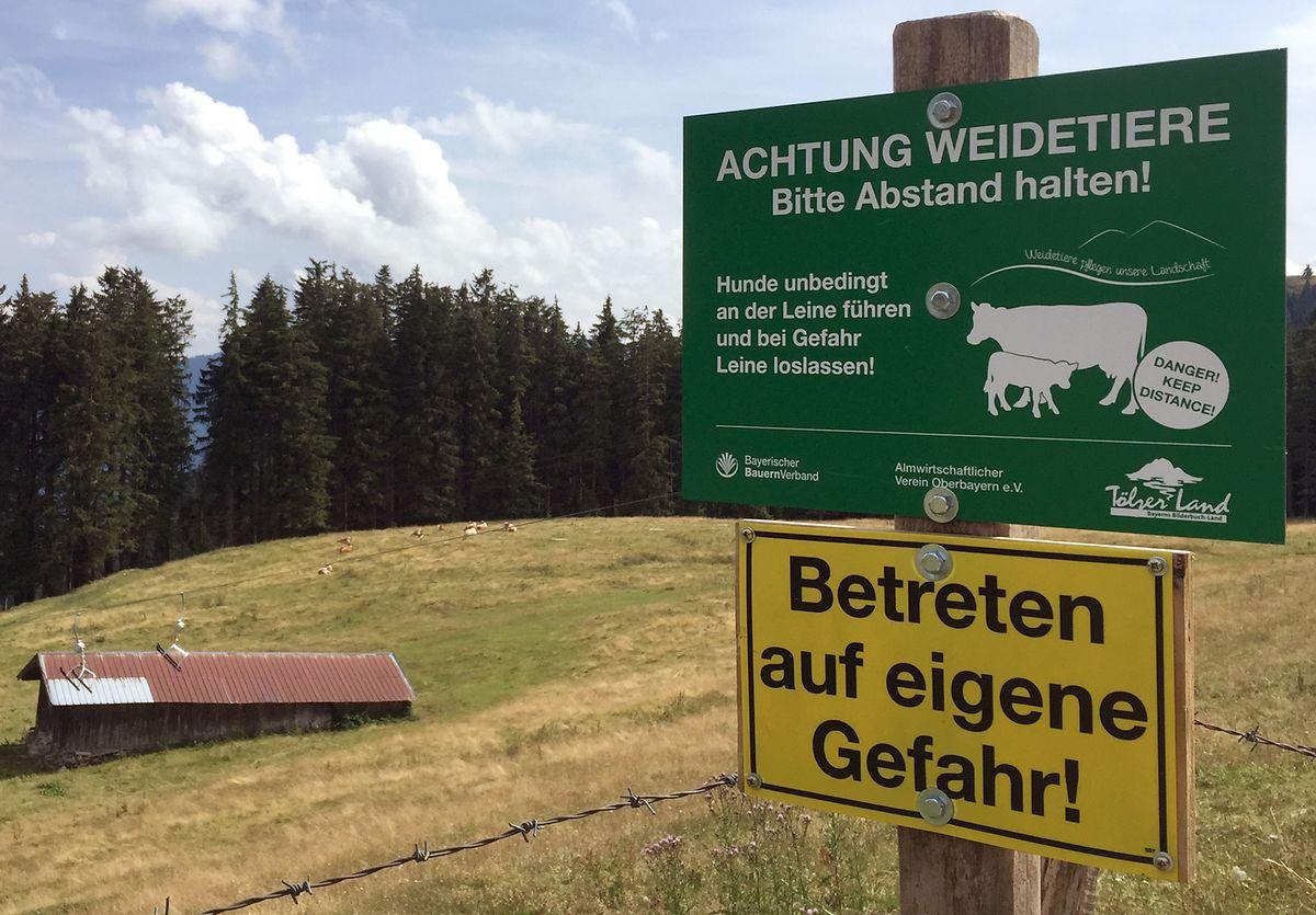 Ein Schild auf dem Blomberg warnt vor dem Betreten einer Kuhweide. Auch in Bayern sind Almbauern verunsichert und suchen nach Wegen zu einem friedlichen Miteinander von Vieh und Tourist.