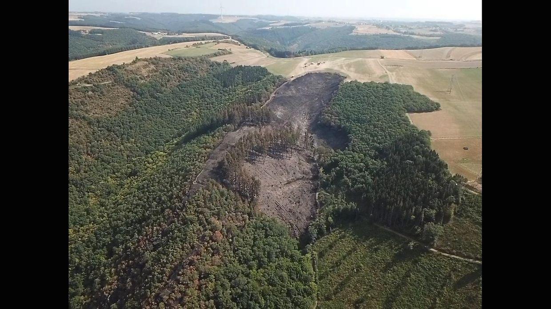 Dieses Bild, auf dem man das ganze Ausmaß des Brandes sieht, wurde zwei Tage nach dem Feuer aufgenommen.