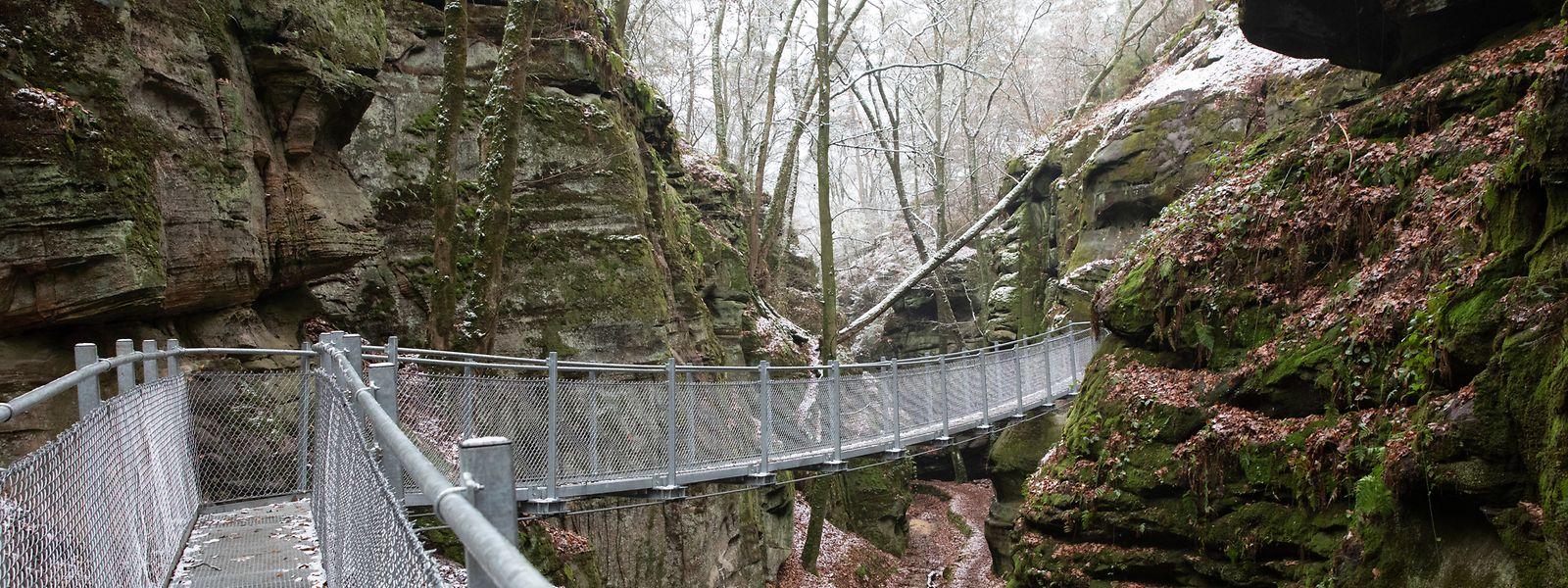 Auf dieser stählernen Hängebrücke können Wanderer den Roitsbach bei Berdorf bald in sicherer Höhe überqueren.