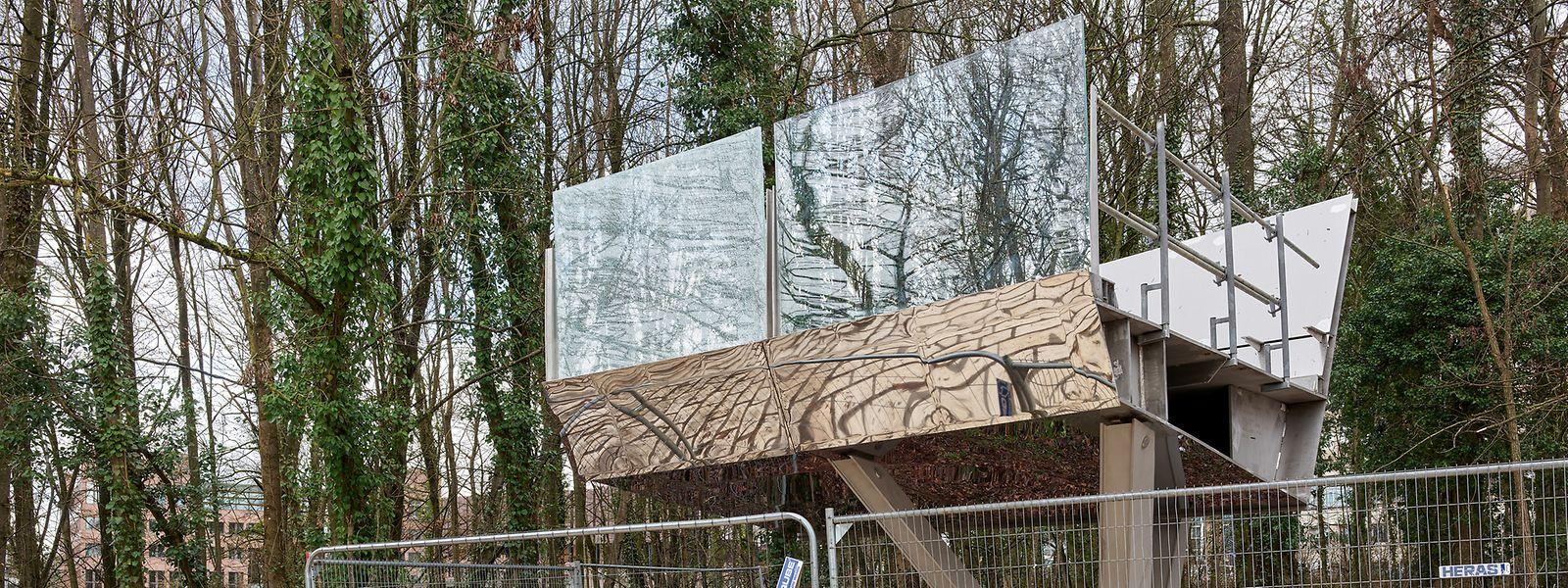 """Voici un """"petit"""" échantillon de ce à quoi ressemblera la passerelle qui s'élèvera jusqu'à 12m du sol au milieu de la canopée."""