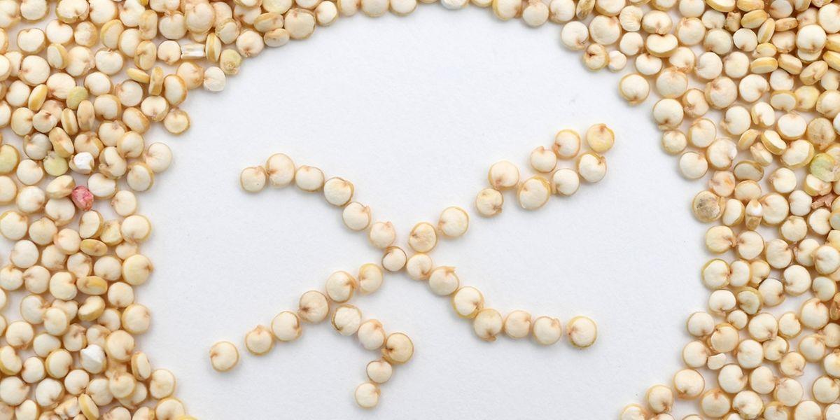 Quinoa enthält kein Gluten. Somit ist es für Menschen mit einer Zöliakie-Unverträglichkeit ideal.