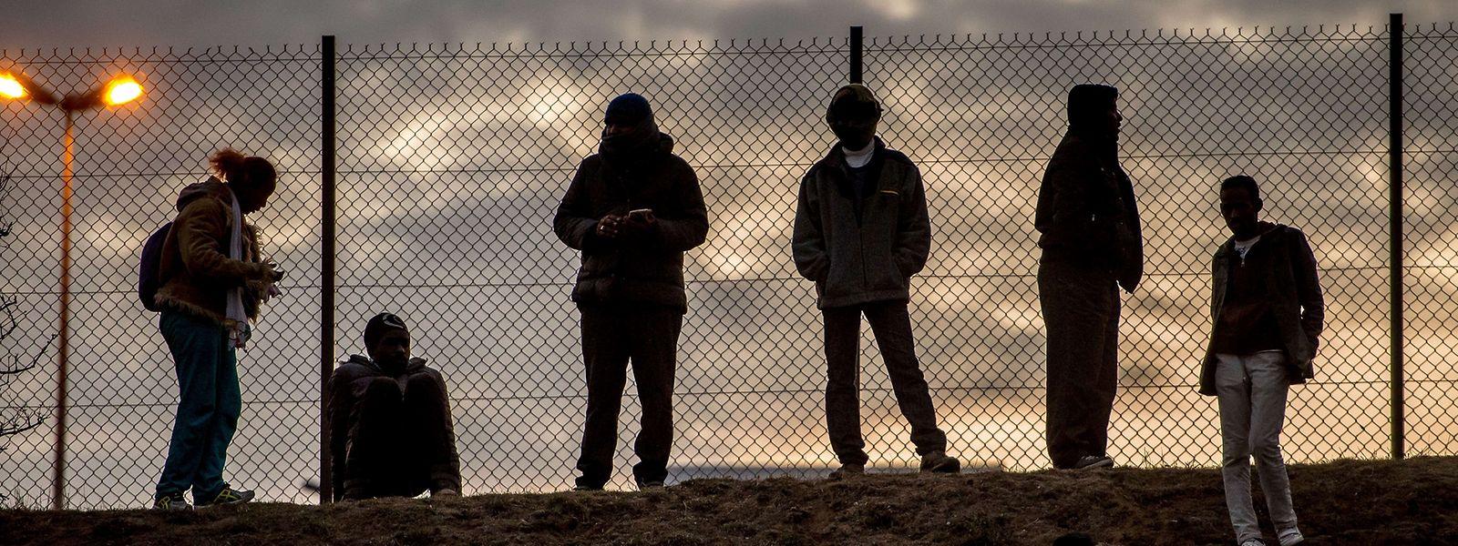 Junge Migranten warten bei Morgengrauen vor einer Absperrung bei Coquelles auf dem Eurotunnel-Gelände.