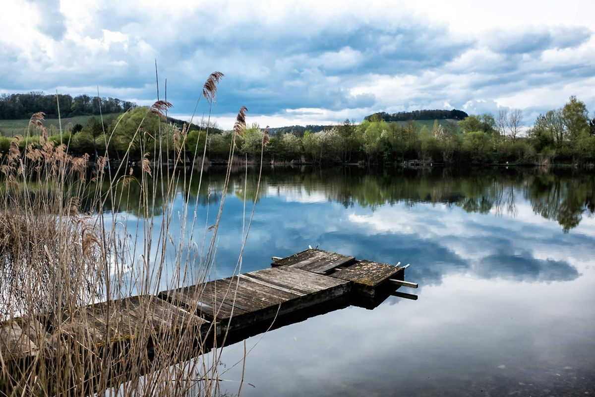 The Haff Reimich nature reserve has 30 ponds and is home to 250 bird species Photo: Shutterstock